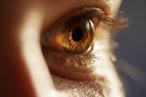 Developments of Artificial Intelligence in Optometry WeeklyReviewer artificial intelligence in optometry